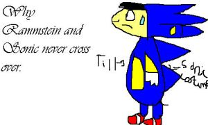 Till in a Sonic suit. by MigerstSonic