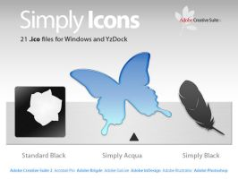 Simply Adobe CS2 by Smiguel