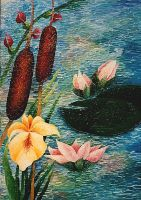 Pond With Water Lily by AnnaArt89