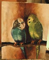 Budgies by ivygreane