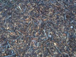 Mulch Texture 3 by Freedom-Falling