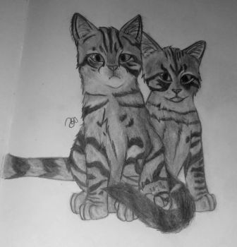 Winnie and Gary - Cats by LetterU