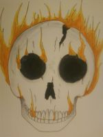Flamed Skull~ complete by xXRoanXx