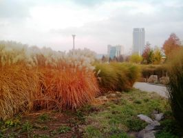 Autumm in Donetsk! by FCSD