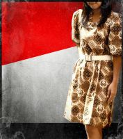 Batik Indonesia by perfectired