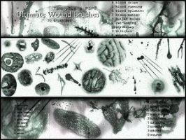 Wound PSP8  by TammySue by The-Stock-Hospital