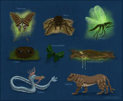 Concept: Forest Creatures by ginkgografix