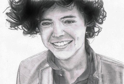 Harry Styles by Francislois