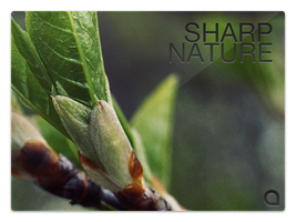 Sharp Nature - Wallpaper pack by Pur3x