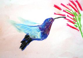 Hummingbird by AlphaPsyka