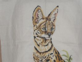 Cross Stitch by Calliope74