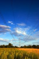 Powerline blues by d-minutiv