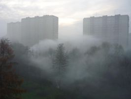 Morning fog I by starykocur