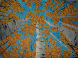 Tree Canopy by lettym