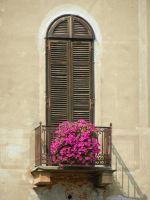 Balcony with flowers in Vercelli by Rikitza