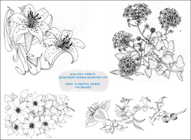 Flower Image Brush Pack 3 by secretheart-designs