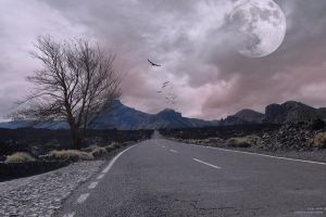 road to nowhere by batjorge