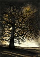 the black tree by Kotwinka