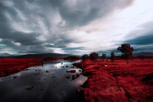 Blood Was Spilled On Rannoch Moor by VelvetRedBullet