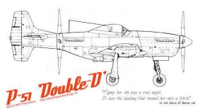 P-51 Double-D by Brandzai