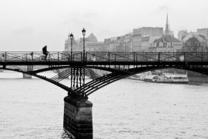 Cold winter morning in Paris by charlomer