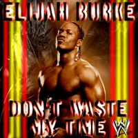 Don't Waste My Time - WWE Single Cover by neXXXusTheUber