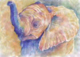 Baby Elephant by CeciliaSal