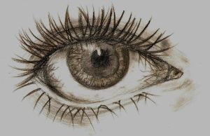 Eye Sketch by alana-101