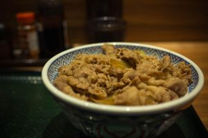 Beef Bowl by feria233