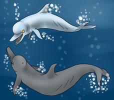 Kitnee8.0 and CyberDolphin by anteatr