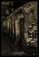 Behind the wall by qlas
