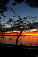 Fall Sunset Series #112 by LifeThroughALens84