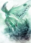 Moonlight butterfly by Spighy