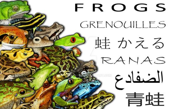 Frogs Collage by rogerdhall