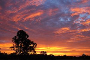 Queensland Fire in the Sky by xjames7