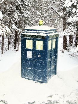 TARDIS in Snow by Cotterill23