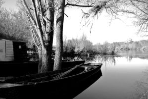Boats and trees by Loupiotte005