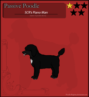 Joel's Passive Poodle Ref by SunnyCreekRanch