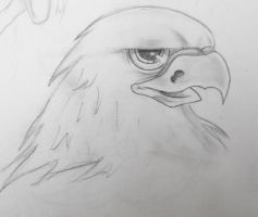 My Eagle by tori201