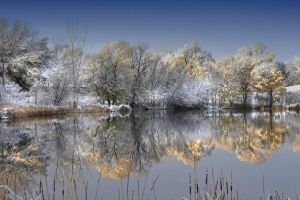 Lake Reflection 5189336 by StockProject1