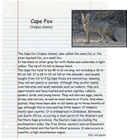 Cape Fox by sofijasoler