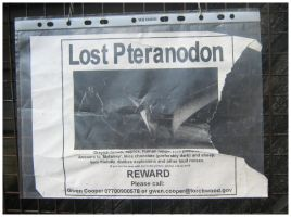 Torchwood: Lost Pteranodon by badwolf-999