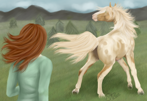 Nordanner 744 Bid:  The Runaway by sazzy-riza