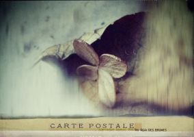 carte postale - 018 by laflaneuse