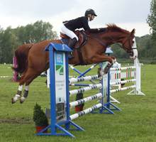 Jumping stock 31 by ByMelody