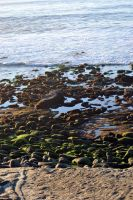 Rocky beach by fosspathei