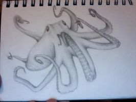 Octopus by brodderick