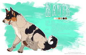Ravir by OctoberStars