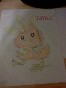 (A rather bloated) Torchic by Hotaru1787