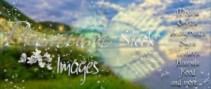 Banner 6 for premium stock by StarsColdNight